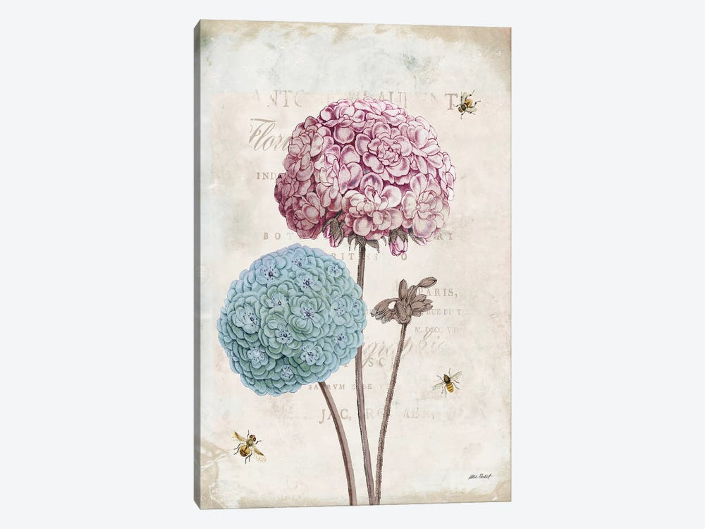 Geranium Study, Pink Flower II by Katie Pertiet 1-piece Canvas Art