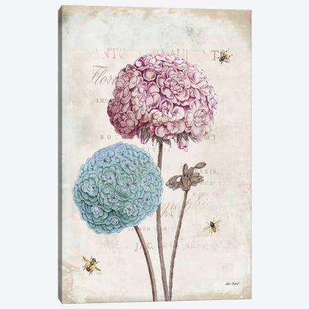 Geranium Study, Pink Flower II Canvas Print #WAC7758} by Katie Pertiet Canvas Art Print