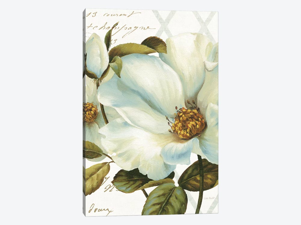White Floral Bliss II by Lisa Audit 1-piece Canvas Artwork