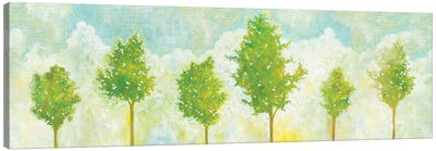Golden Hour V Canvas Art Print