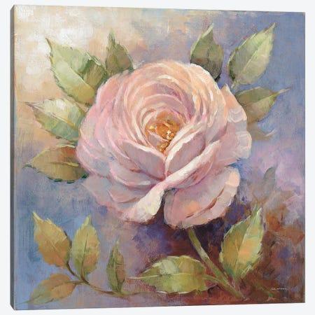 Roses On Blue IV Canvas Print #WAC7880} by Peter McGowan Canvas Art Print
