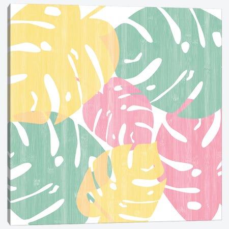 Monstera Bright On White I Canvas Print #WAC7883} by Sarah Adams Canvas Print