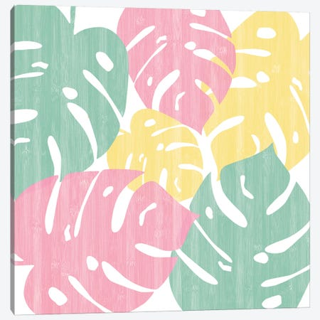 Monstera Bright On White II Canvas Print #WAC7884} by Sarah Adams Canvas Artwork