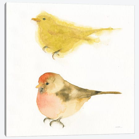 Watercolor Birds I Canvas Print #WAC7887} by Shirley Novak Canvas Art