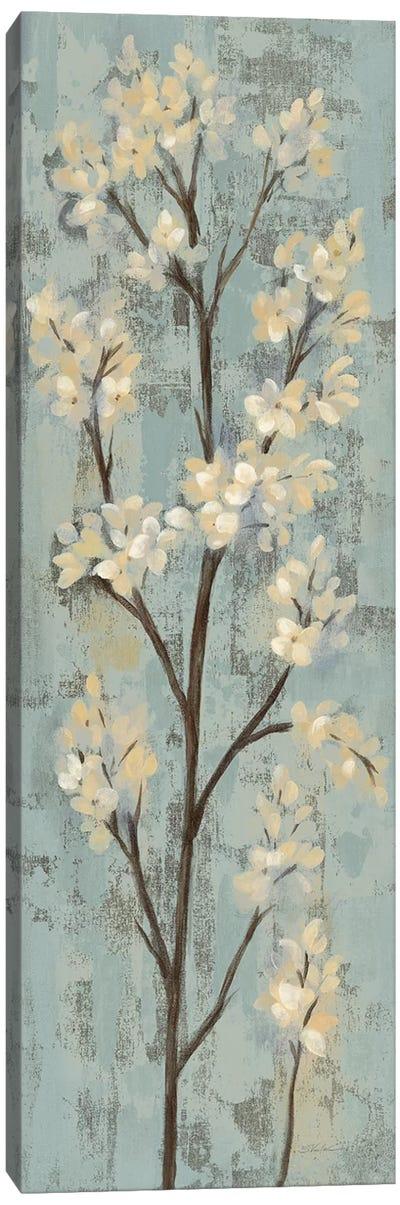 Almond Branch I: On Light Blue Canvas Art Print
