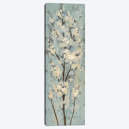 Almond Branch II: On Light Blue Canvas Print #WAC7890} by Silvia Vassileva Canvas Art