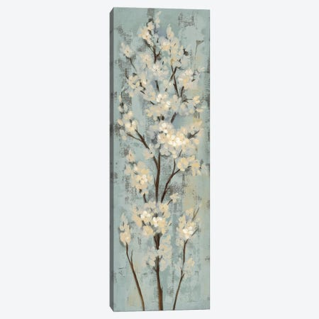 Almond Branch II: On Light Blue Canvas Print #WAC7890} by Silvia Vassileva Canvas Art
