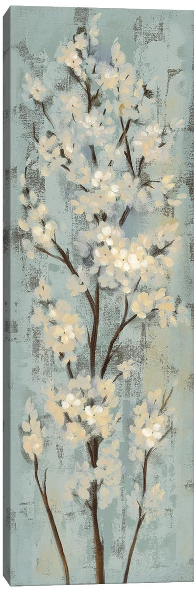 Almond Branch II: On Light Blue Canvas Art Print