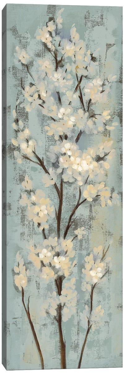 Almond Branch II: On Light Blue Canvas Art Print