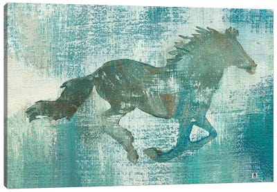 Mustang Study Canvas Art Print