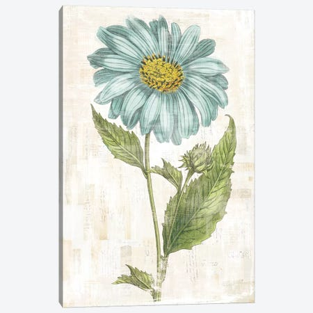 Bloemen Boek VI Canvas Print #WAC7914} by Sue Schlabach Canvas Art