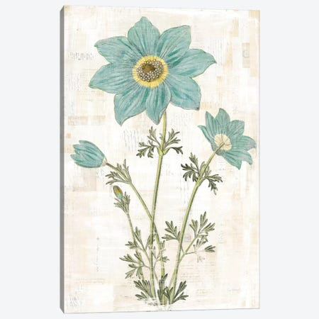 Bloemen Boek VII Canvas Print #WAC7915} by Sue Schlabach Canvas Art