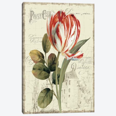 Garden View II Red Tulip Canvas Print #WAC793} by Lisa Audit Canvas Artwork