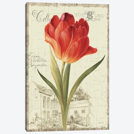 Garden View III Red Tulip Canvas Print #WAC794} by Lisa Audit Canvas Print