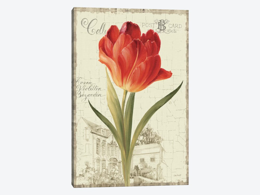 Garden View III Red Tulip by Lisa Audit 1-piece Canvas Artwork