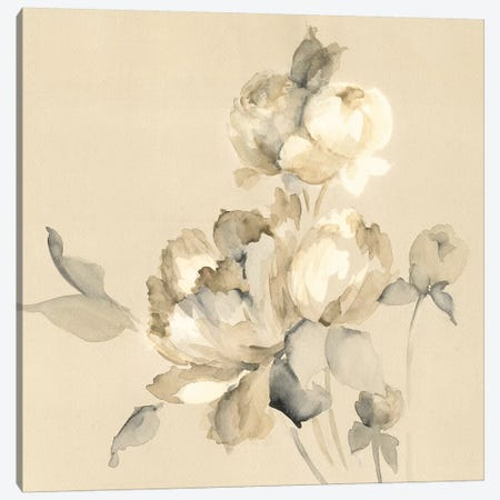 Peony Blossoms Canvas Print #WAC7965} by Wild Apple Portfolio Canvas Print