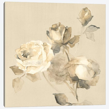 Rose Blossoms Canvas Print #WAC7974} by Wild Apple Portfolio Canvas Art