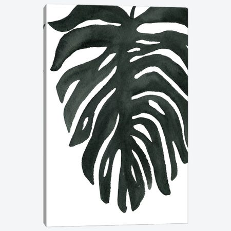 Tropical Palm II Canvas Print #WAC7976} by Wild Apple Portfolio Canvas Wall Art