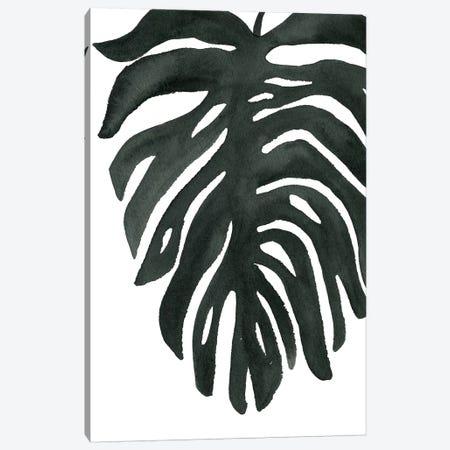 Tropical Palm II Canvas Print #WAC7976} by Wild Apple Portfolio Canvas Wall Art