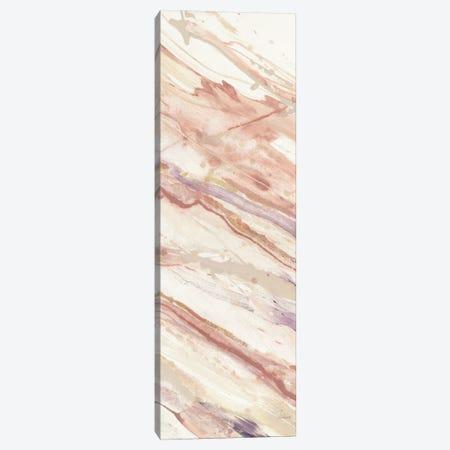 Copper Dreams III Canvas Print #WAC7980} by Albena Hristova Canvas Wall Art