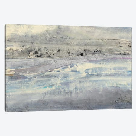Silver Horizon Canvas Print #WAC7992} by Albena Hristova Canvas Art Print