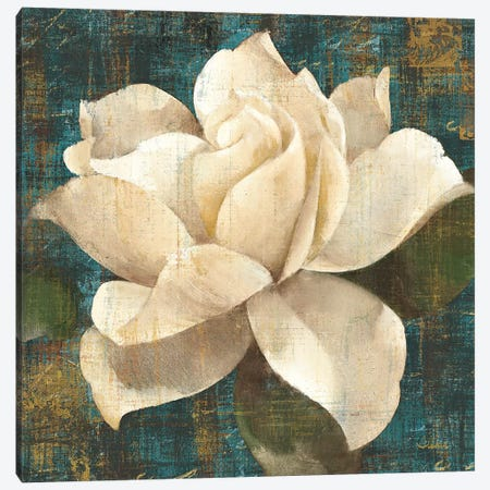 Gardenia Blossom Turquoise Canvas Print #WAC7} by Albena Hristova Canvas Wall Art