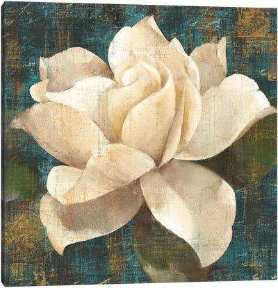 Gardenia Blossom Turquoise Canvas Print #WAC7