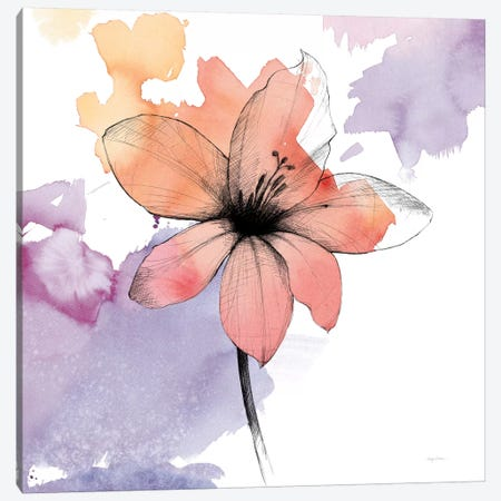 Global GalleryAvery Tillmon Watercolor Graphite Flower IX Giclee Stretched Canvas Artwork 24 x 24