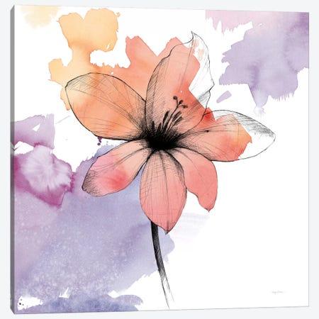 Watercolor Graphite Flower II Canvas Print #WAC8002} by Avery Tillmon Canvas Art Print