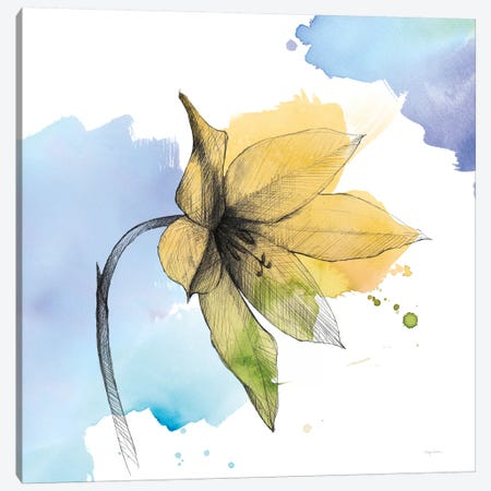 Watercolor Graphite Flower VIII Canvas Print #WAC8005} by Avery Tillmon Canvas Artwork
