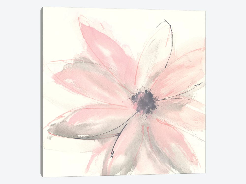 Blush Clematis I by Chris Paschke 1-piece Canvas Wall Art