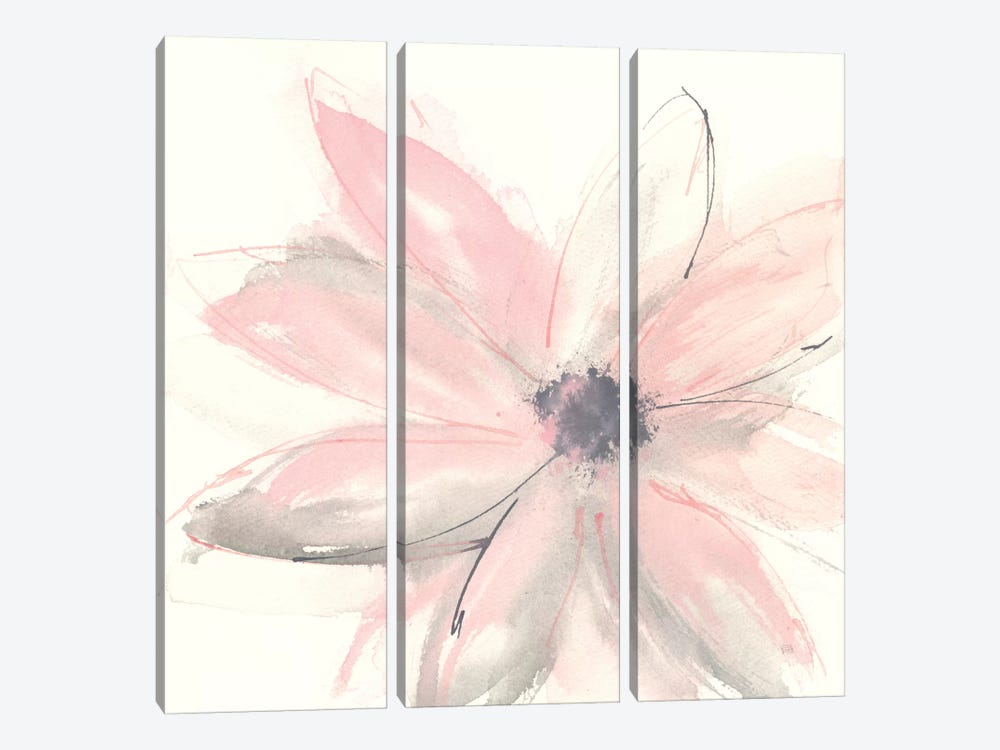 Blush Clematis I by Chris Paschke 3-piece Canvas Wall Art