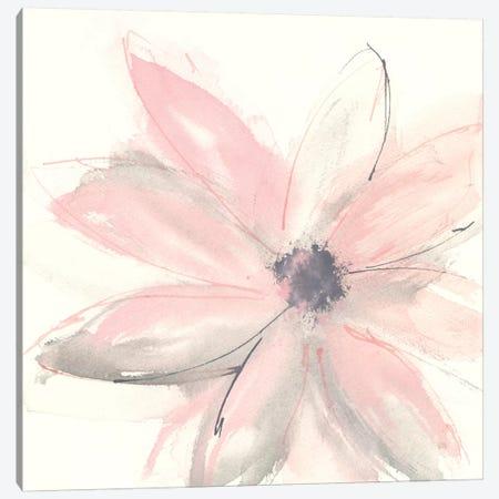 Blush Clematis I Canvas Print #WAC8012} by Chris Paschke Canvas Art