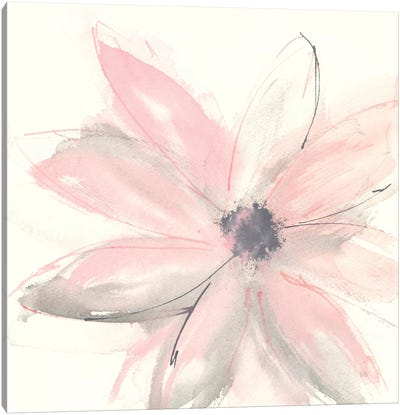 Blush Clematis I Canvas Art Print