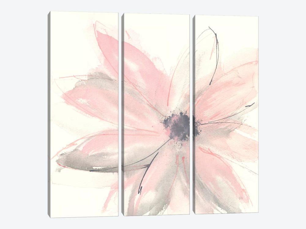 Blush Clematis I by Chris Paschke 3-piece Canvas Wall Art