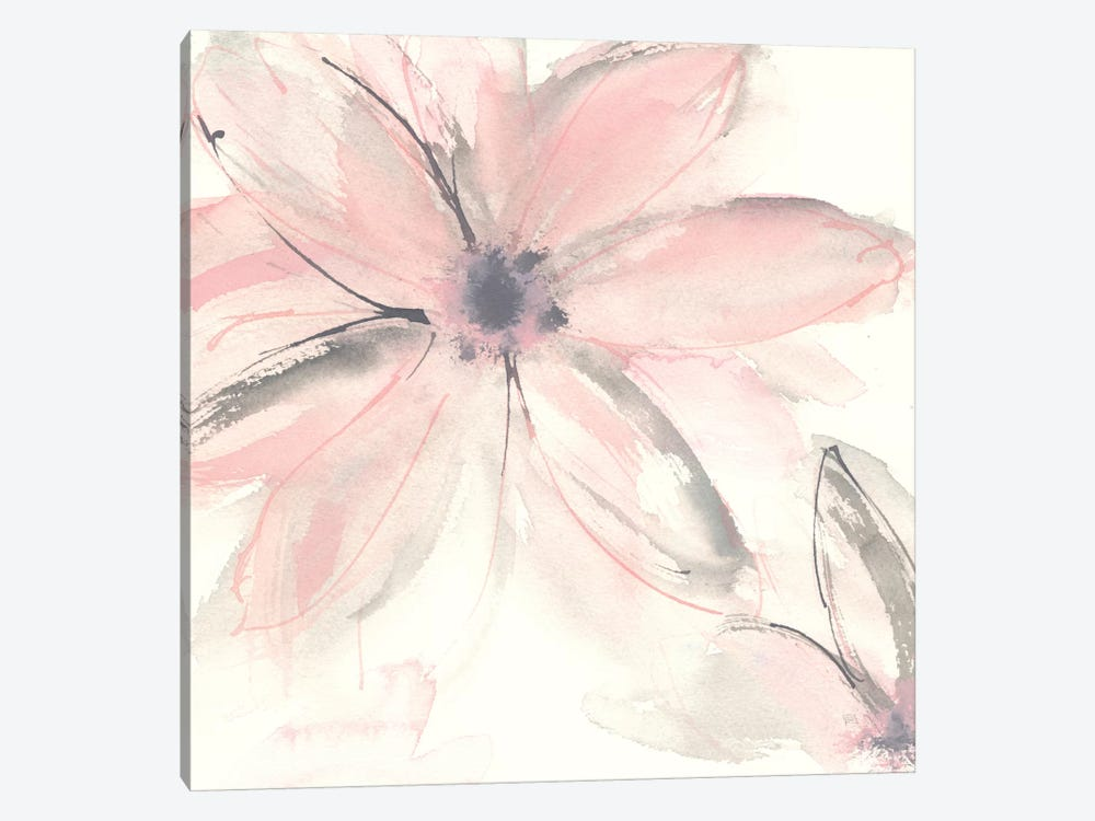 Blush Clematis II by Chris Paschke 1-piece Canvas Art Print