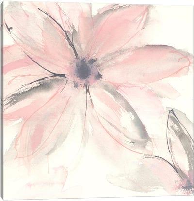 Blush Clematis II Canvas Art Print