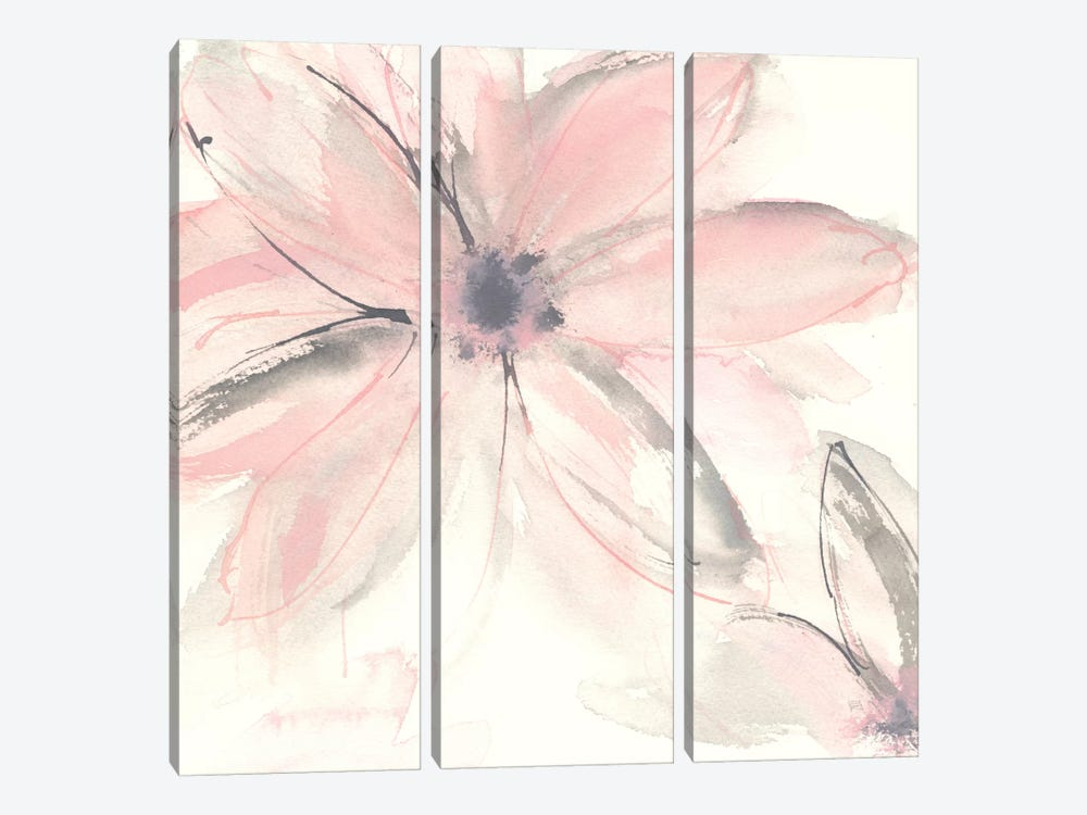 Blush Clematis II by Chris Paschke 3-piece Canvas Print