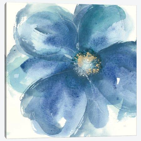 Indigo Mint III Canvas Print #WAC8020} by Chris Paschke Canvas Print