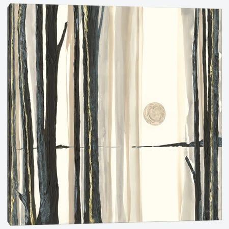 Through The Trees IV Canvas Print #WAC8028} by Chris Paschke Art Print