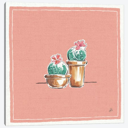Desert Bloom XI Canvas Print #WAC8042} by Daphne Brissonnet Canvas Art Print