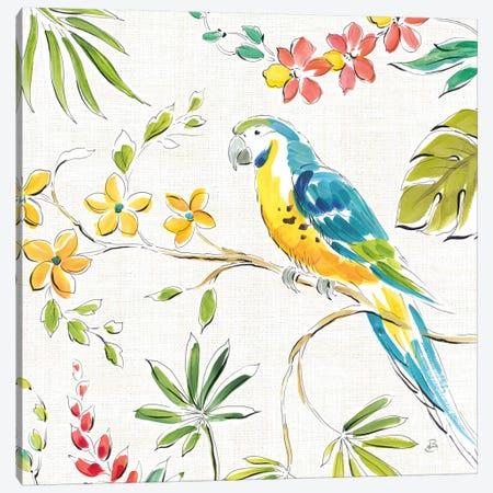 Tropical Oasis, White IV Canvas Print #WAC8049} by Daphne Brissonnet Canvas Print