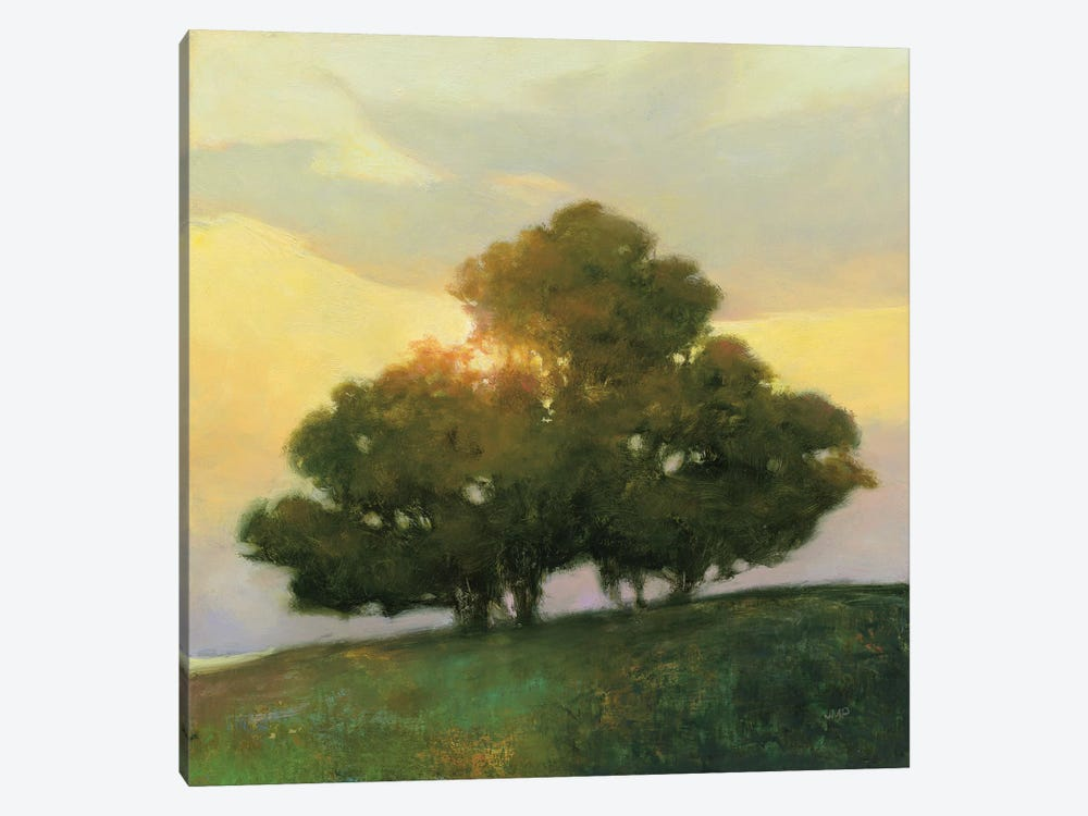 Spice Tree by Julia Purinton 1-piece Canvas Print