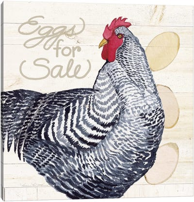 Life On The Farm: Chicken I Canvas Art Print