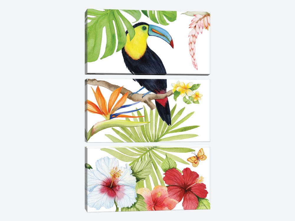 Treasures Of The Tropics I by Kathleen Parr McKenna 3-piece Canvas Art