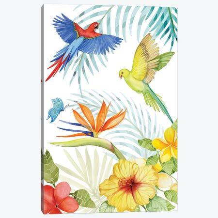 Treasures Of The Tropics II Canvas Print #WAC8134} by Kathleen Parr McKenna Canvas Artwork