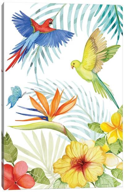 Treasures Of The Tropics II Canvas Art Print