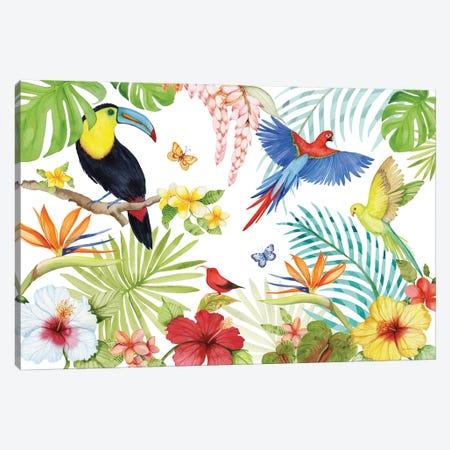 Treasures Of The Tropics III Canvas Print #WAC8135} by Kathleen Parr McKenna Canvas Wall Art