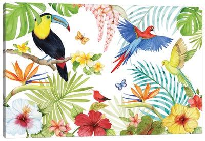 Treasures Of The Tropics III Canvas Art Print