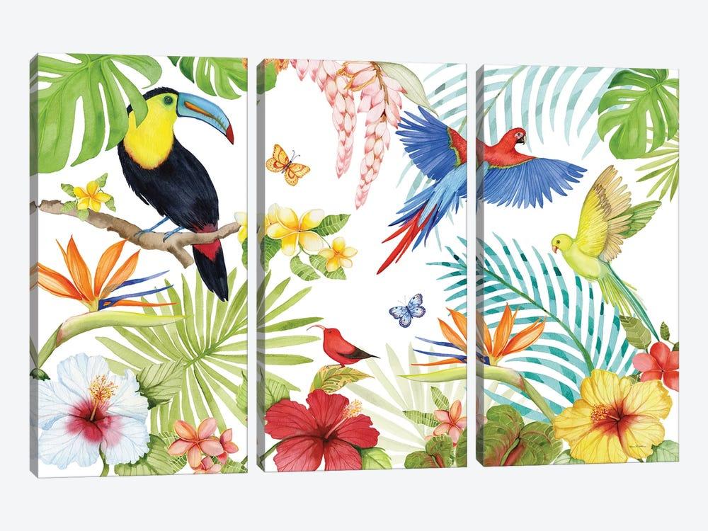 Treasures Of The Tropics III by Kathleen Parr McKenna 3-piece Canvas Artwork